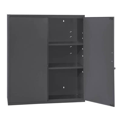 Wall Mount Cabinet with Adjustable Shelves